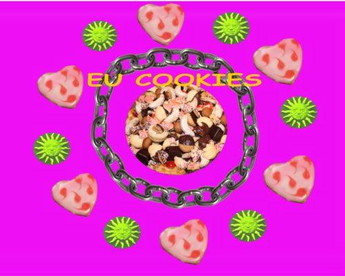 "Cookie Zwang ist illegal - ""notwendige"" Cookies sind unnötig !"